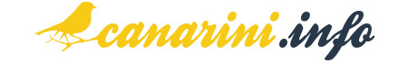 Canarini.info